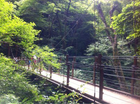 2012_takao_06.jpg