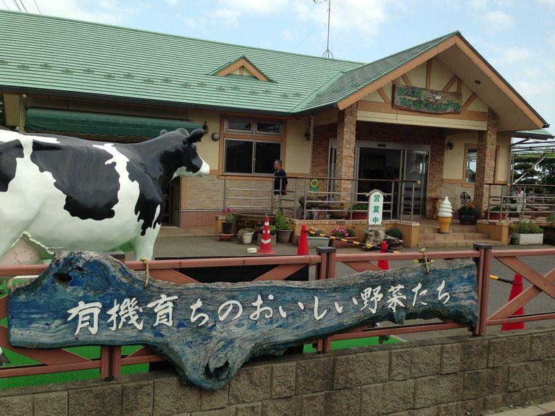 sakuma_icecream_3.jpg