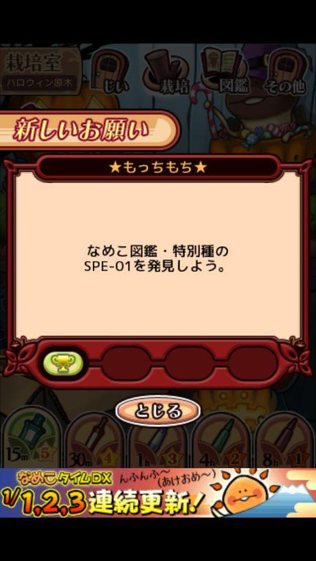 201301_nameko_05.jpg