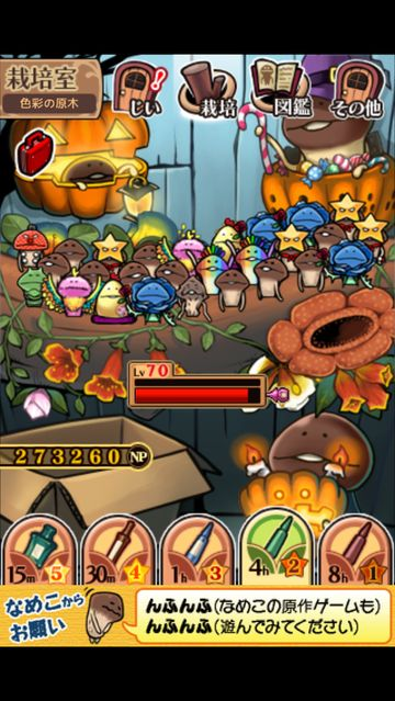 nameko_limit_break_high_02.jpg