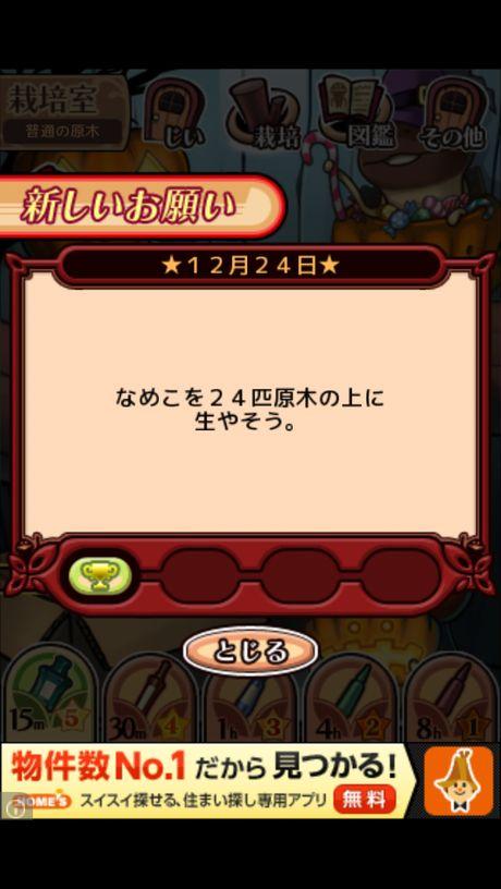 nameko_xmas2012_2.jpg